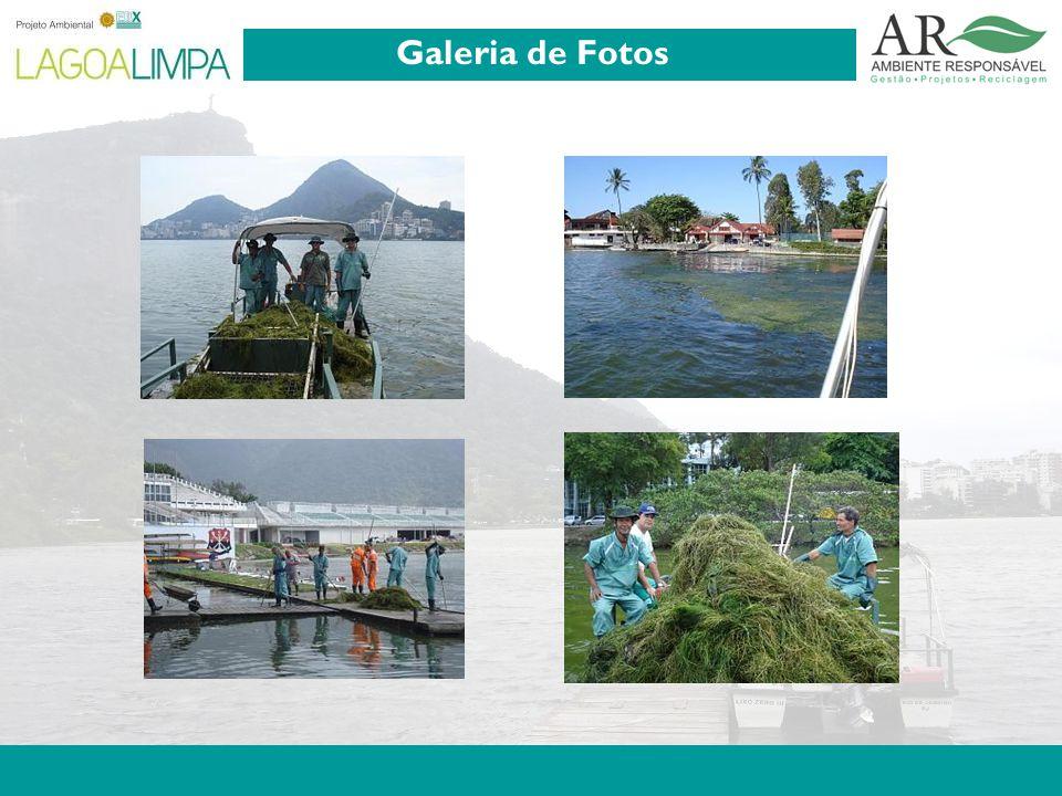 Pag. 6 Galeria de Fotos