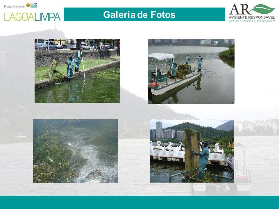 Pag. 8 Galeria de Fotos