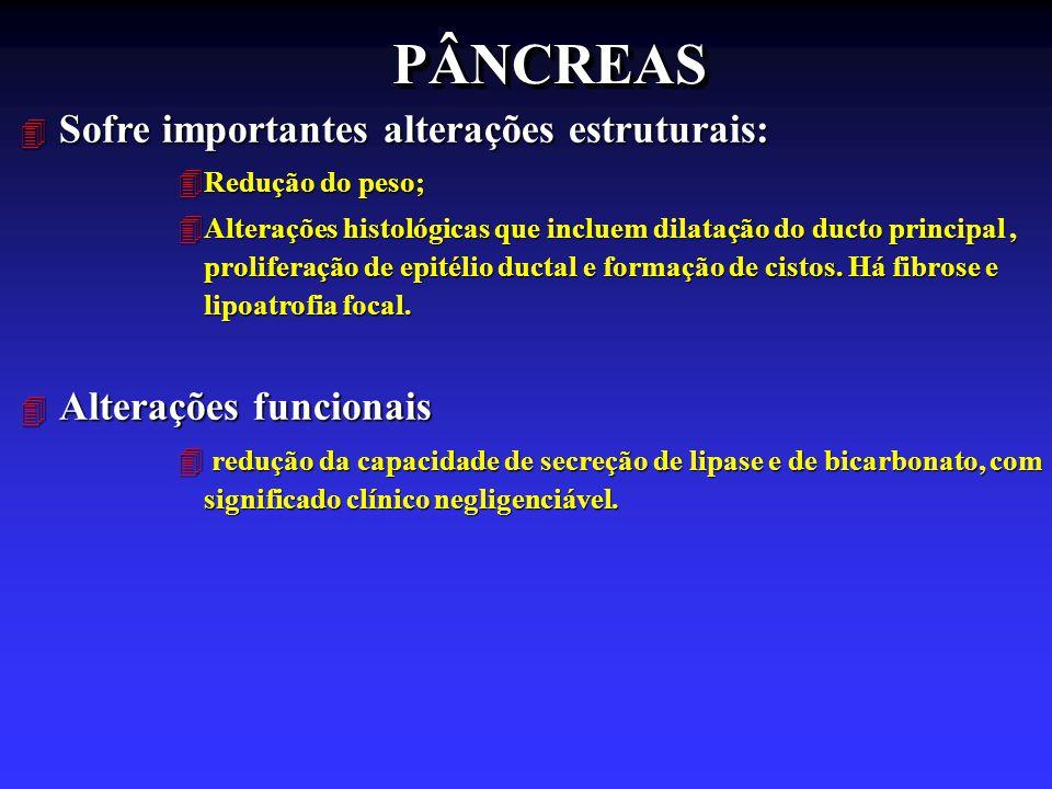 PÂNCREASPÂNCREAS 4 Sofre importantes alterações estruturais: 4Redução do peso; 4Alterações histológicas que incluem dilatação do ducto principal, prol