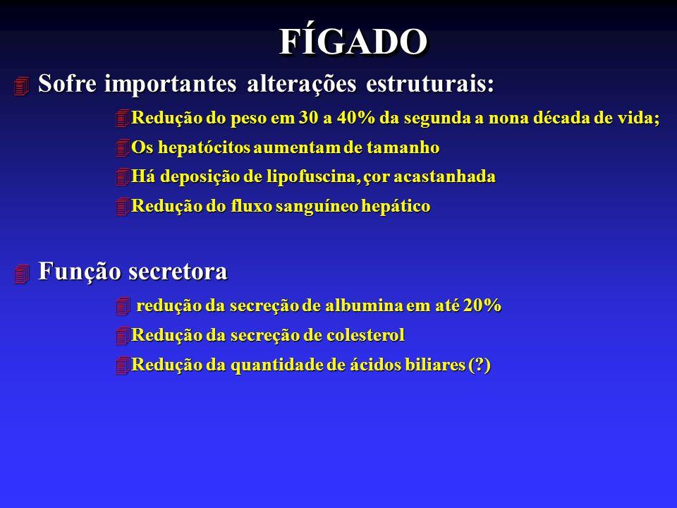 FÍGADOFÍGADO 4 Sofre importantes alterações estruturais: 4Redução do peso em 30 a 40% da segunda a nona década de vida; 4Os hepatócitos aumentam de ta