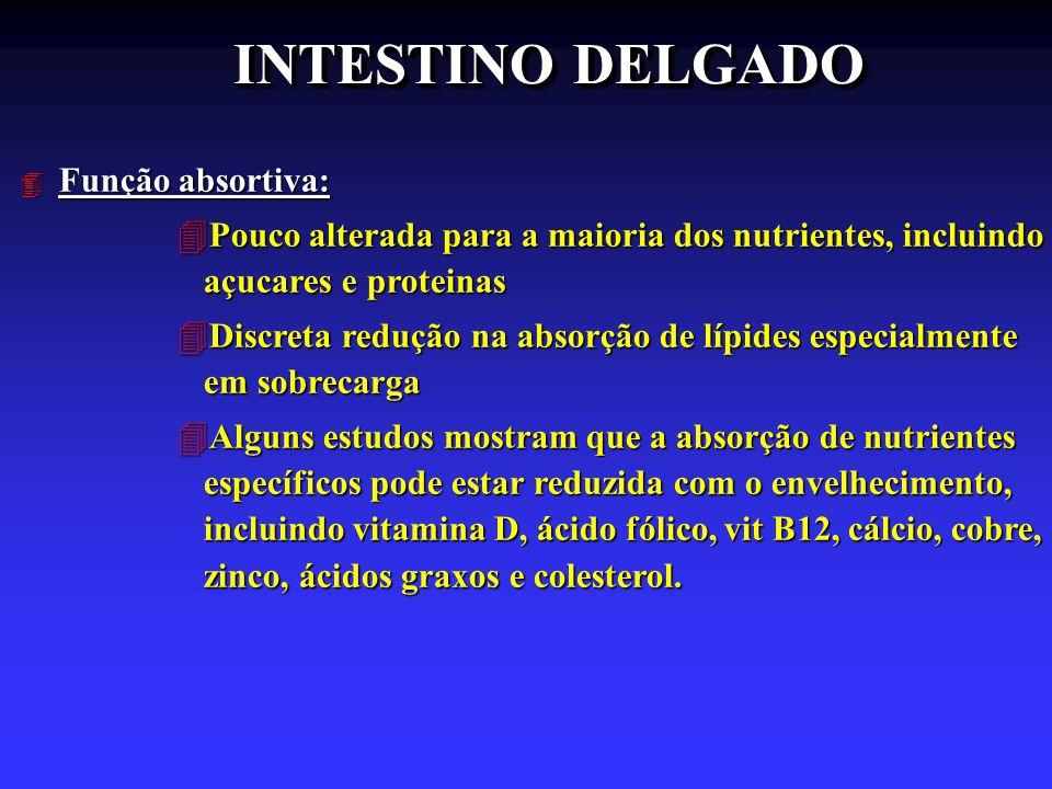 INTESTINO DELGADO 4 Função absortiva: 4Pouco alterada para a maioria dos nutrientes, incluindo açucares e proteinas 4Discreta redução na absorção de l