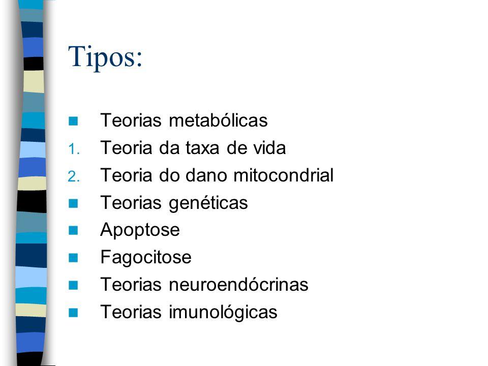 Tipos: Teorias metabólicas 1.Teoria da taxa de vida 2.