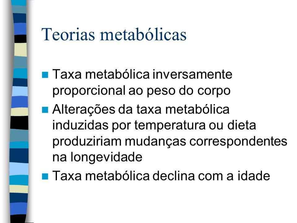 Teorias metabólicas Taxa metabólica inversamente proporcional ao peso do corpo Alterações da taxa metabólica induzidas por temperatura ou dieta produziriam mudanças correspondentes na longevidade Taxa metabólica declina com a idade