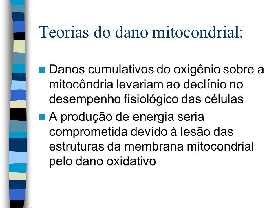 Teorias do dano mitocondrial: Danos cumulativos do oxigênio sobre a mitocôndria levariam ao declínio no desempenho fisiológico das células A produção de energia seria comprometida devido à lesão das estruturas da membrana mitocondrial pelo dano oxidativo