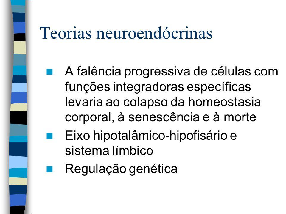 Teorias neuroendócrinas A falência progressiva de células com funções integradoras específicas levaria ao colapso da homeostasia corporal, à senescência e à morte Eixo hipotalâmico-hipofisário e sistema límbico Regulação genética