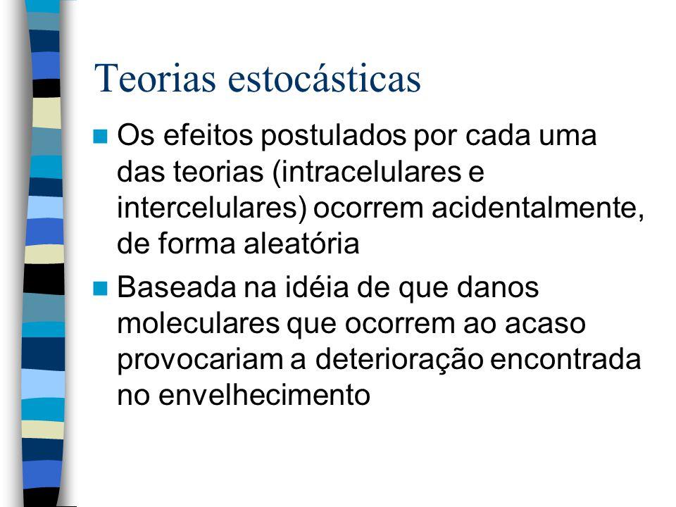 Teorias estocásticas Os efeitos postulados por cada uma das teorias (intracelulares e intercelulares) ocorrem acidentalmente, de forma aleatória Baseada na idéia de que danos moleculares que ocorrem ao acaso provocariam a deterioração encontrada no envelhecimento