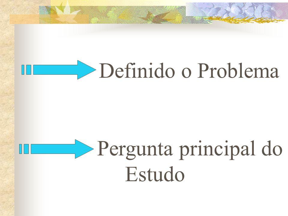 Definido o Problema Pergunta principal do Estudo