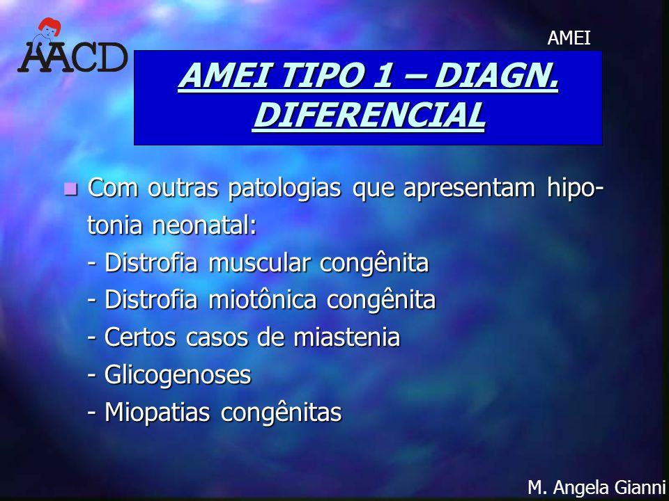 M. Angela Gianni AMEI AMEI TIPO 1 – DIAGN. DIFERENCIAL Com outras patologias que apresentam hipo- Com outras patologias que apresentam hipo- tonia neo