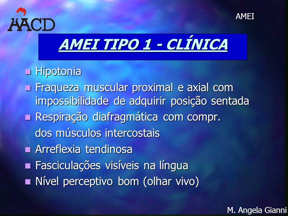 M. Angela Gianni AMEI AMEI TIPO 1 - CLÍNICA Hipotonia Hipotonia Fraqueza muscular proximal e axial com impossibilidade de adquirir posição sentada Fra