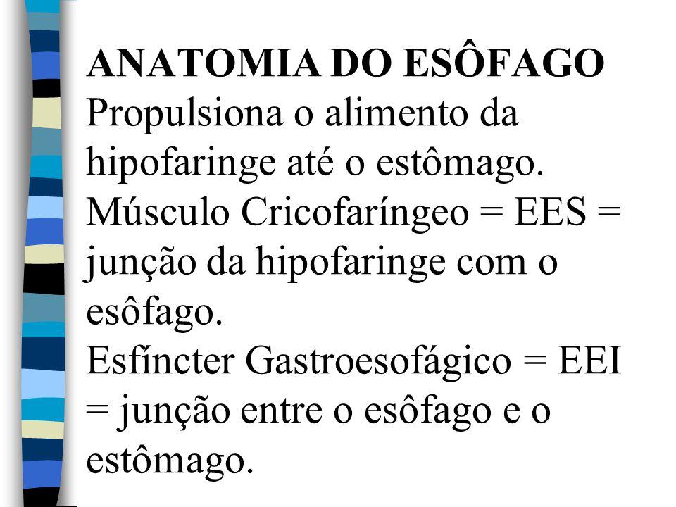 ANATOMIA DO ESÔFAGO Propulsiona o alimento da hipofaringe até o estômago. Músculo Cricofaríngeo = EES = junção da hipofaringe com o esôfago. Esfíncter