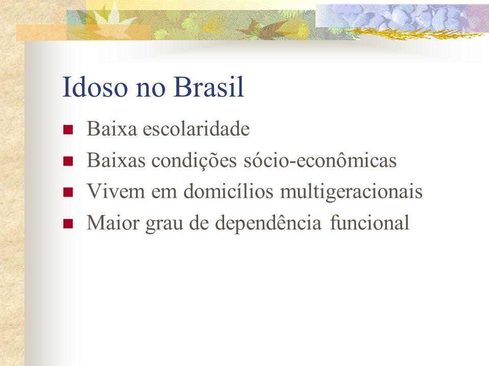 Idoso no Brasil Baixa escolaridade Baixas condições sócio-econômicas Vivem em domicílios multigeracionais Maior grau de dependência funcional