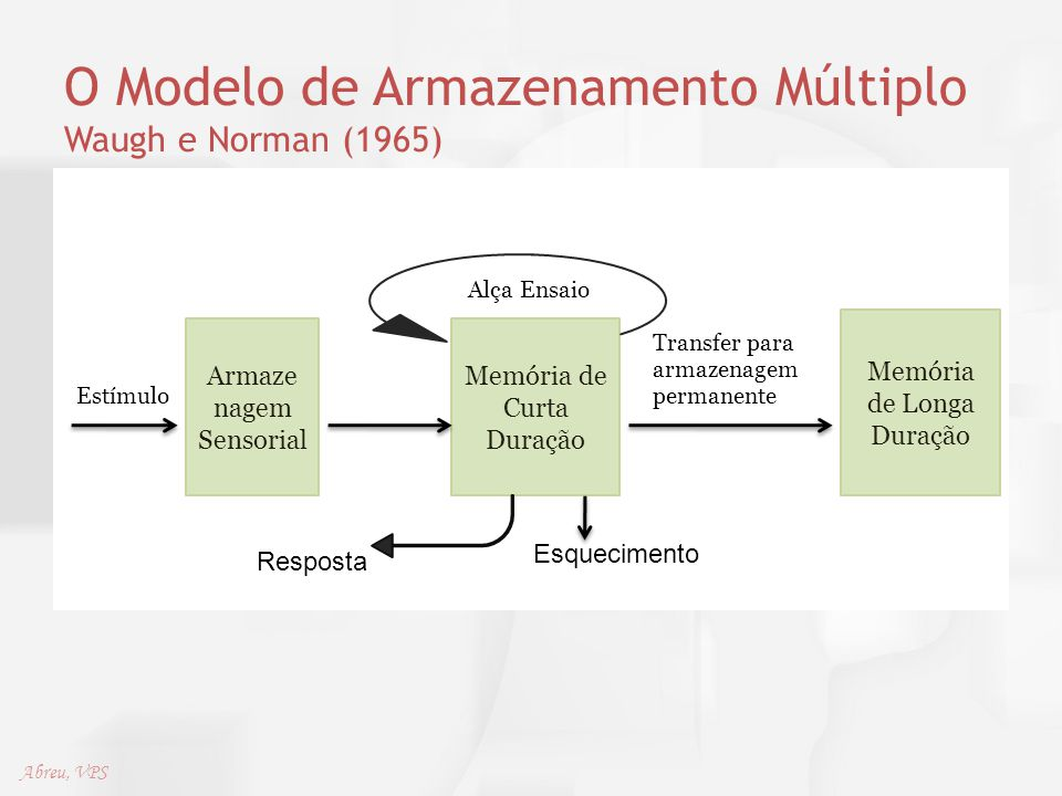 O Modelo de Armazenamento Múltiplo Waugh e Norman (1965) Alça Ensaio Transfer para armazenagem Estímulo permanente Armaze nagem Sensorial Memória de C