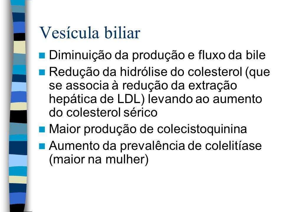 Vesícula biliar Diminuição da produção e fluxo da bile Redução da hidrólise do colesterol (que se associa à redução da extração hepática de LDL) levando ao aumento do colesterol sérico Maior produção de colecistoquinina Aumento da prevalência de colelitíase (maior na mulher)