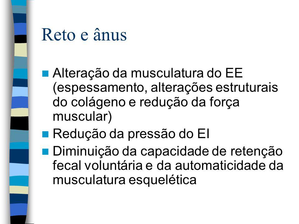 Reto e ânus Alteração da musculatura do EE (espessamento, alterações estruturais do colágeno e redução da força muscular) Redução da pressão do EI Diminuição da capacidade de retenção fecal voluntária e da automaticidade da musculatura esquelética