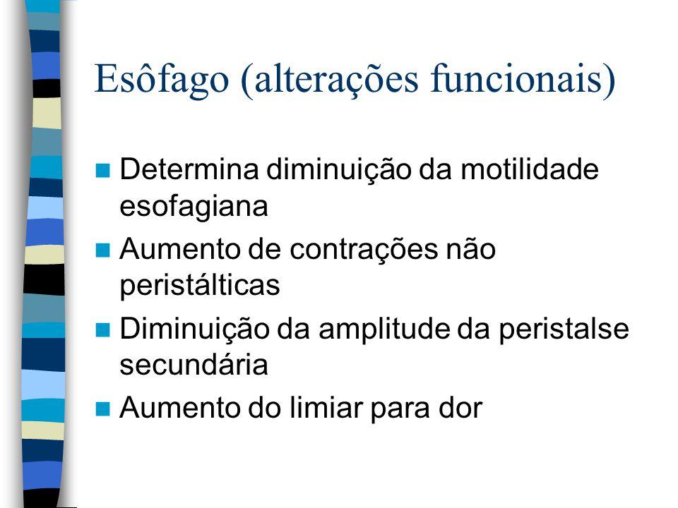 Alterações intestinais Função absortiva pouco alterada (B12, ácido fólico) Maior risco de diverticulose/diverticulite devido a uma alteração da resistência da parede e alteração do plexo mioentérico