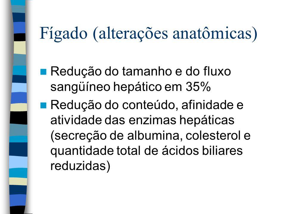 Fígado (alterações anatômicas) Redução do tamanho e do fluxo sangüíneo hepático em 35% Redução do conteúdo, afinidade e atividade das enzimas hepáticas (secreção de albumina, colesterol e quantidade total de ácidos biliares reduzidas)