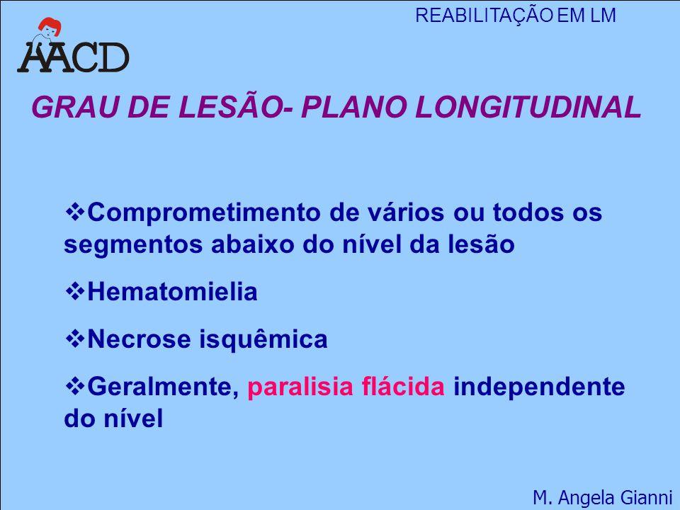 REABILITAÇÃO EM LM M. Angela Gianni GRAU DE LESÃO- PLANO LONGITUDINAL  Comprometimento de vários ou todos os segmentos abaixo do nível da lesão  Hem