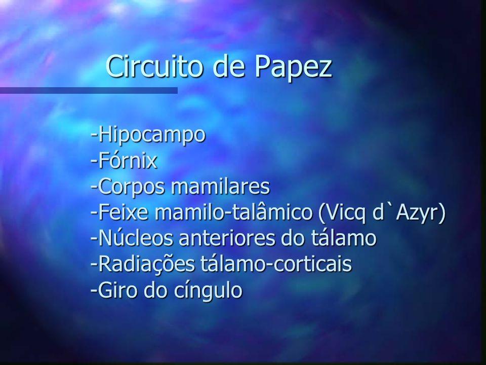 Circuito de Papez -Hipocampo -Fórnix -Corpos mamilares -Feixe mamilo-talâmico (Vicq d`Azyr) -Núcleos anteriores do tálamo -Radiações tálamo-corticais