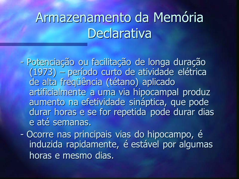 Armazenamento da Memória Declarativa - Potenciação ou facilitação de longa duração (1973) – período curto de atividade elétrica de alta freqüência (té
