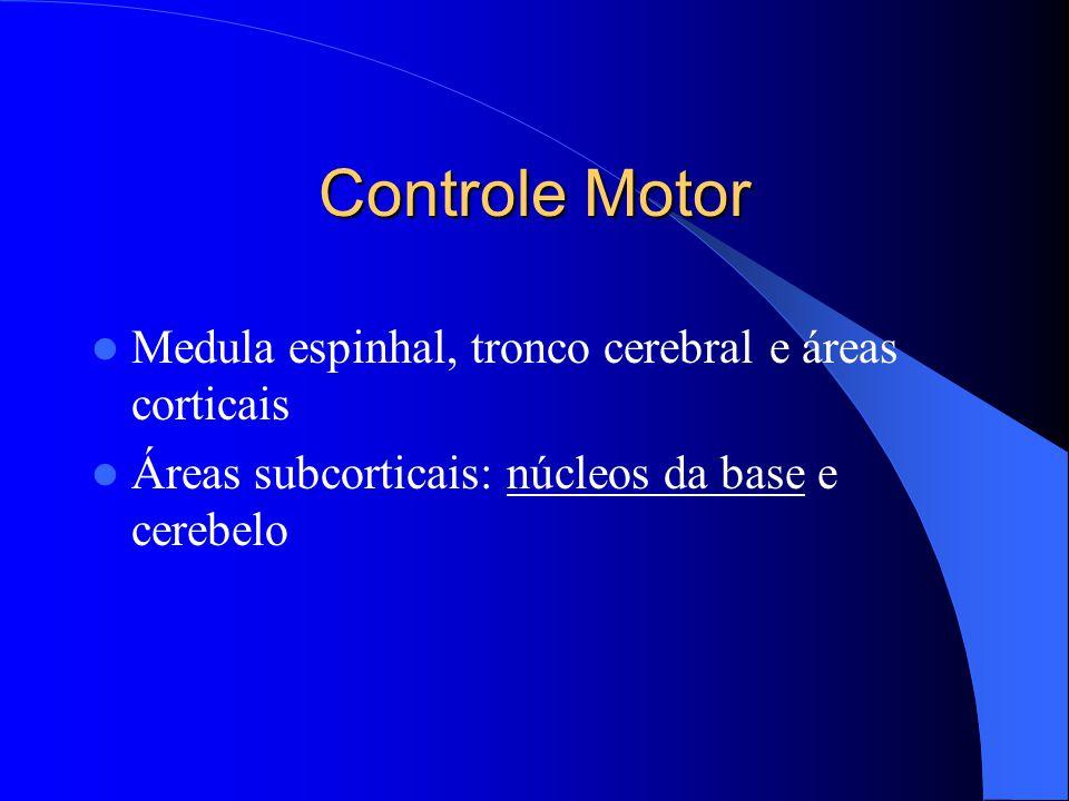 Controle Motor Medula espinhal, tronco cerebral e áreas corticais Áreas subcorticais: núcleos da base e cerebelo