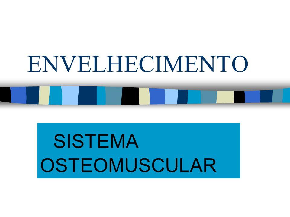 ENVELHECIMENTO SISTEMA OSTEOMUSCULAR
