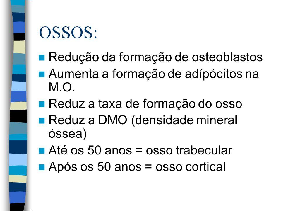 OSSOS: Redução da formação de osteoblastos Aumenta a formação de adípócitos na M.O. Reduz a taxa de formação do osso Reduz a DMO (densidade mineral ós