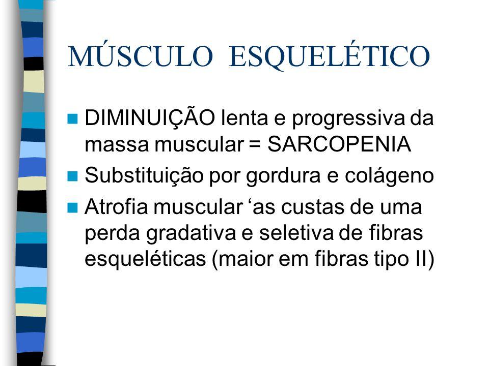 MÚSCULO ESQUELÉTICO DIMINUIÇÃO lenta e progressiva da massa muscular = SARCOPENIA Substituição por gordura e colágeno Atrofia muscular 'as custas de u