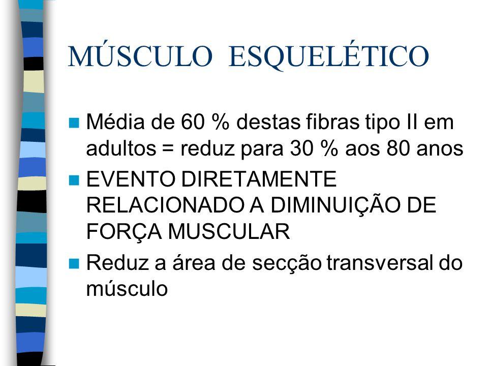 MÚSCULO ESQUELÉTICO Média de 60 % destas fibras tipo II em adultos = reduz para 30 % aos 80 anos EVENTO DIRETAMENTE RELACIONADO A DIMINUIÇÃO DE FORÇA