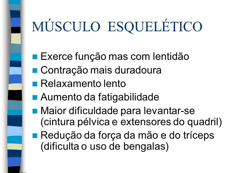 MÚSCULO ESQUELÉTICO Exerce função mas com lentidão Contração mais duradoura Relaxamento lento Aumento da fatigabilidade Maior dificuldade para levanta