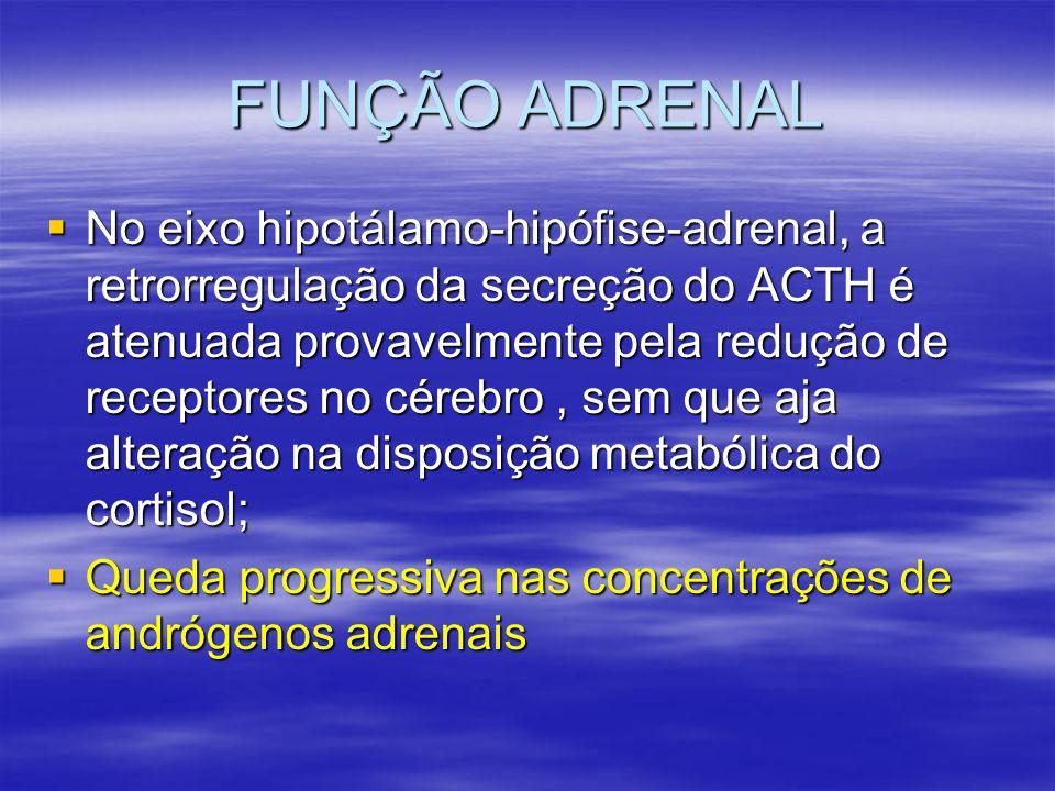 FUNÇÃO ADRENAL  No eixo hipotálamo-hipófise-adrenal, a retrorregulação da secreção do ACTH é atenuada provavelmente pela redução de receptores no cér