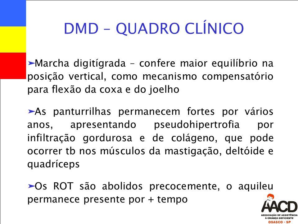 DMD – QUADRO CLÍNICO äMarcha digitígrada – confere maior equilíbrio na posição vertical, como mecanismo compensatório para flexão da coxa e do joelho äAs panturrilhas permanecem fortes por vários anos, apresentando pseudohipertrofia por infiltração gordurosa e de colágeno, que pode ocorrer tb nos músculos da mastigação, deltóide e quadríceps äOs ROT são abolidos precocemente, o aquileu permanece presente por + tempo