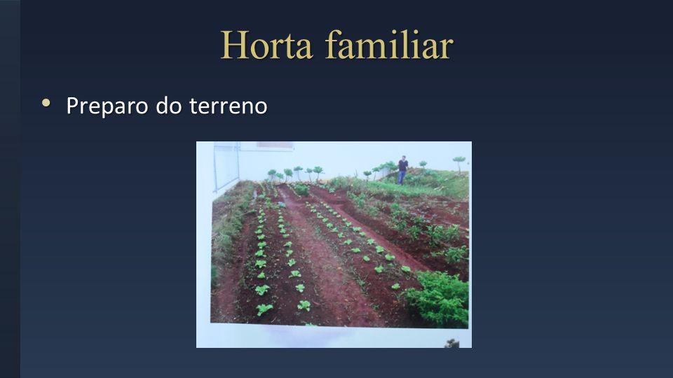Preparo do terreno Preparo do terreno Horta familiar