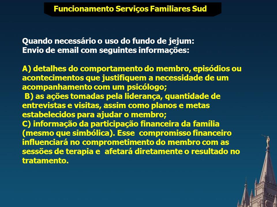 FUNCIONAMENTO SERVIÇOS FAMILIARES SUD Funcionamento Serviços Familiares Sud Recomendação de recursos e tratamentos que terão maior probabilidade de sucesso.