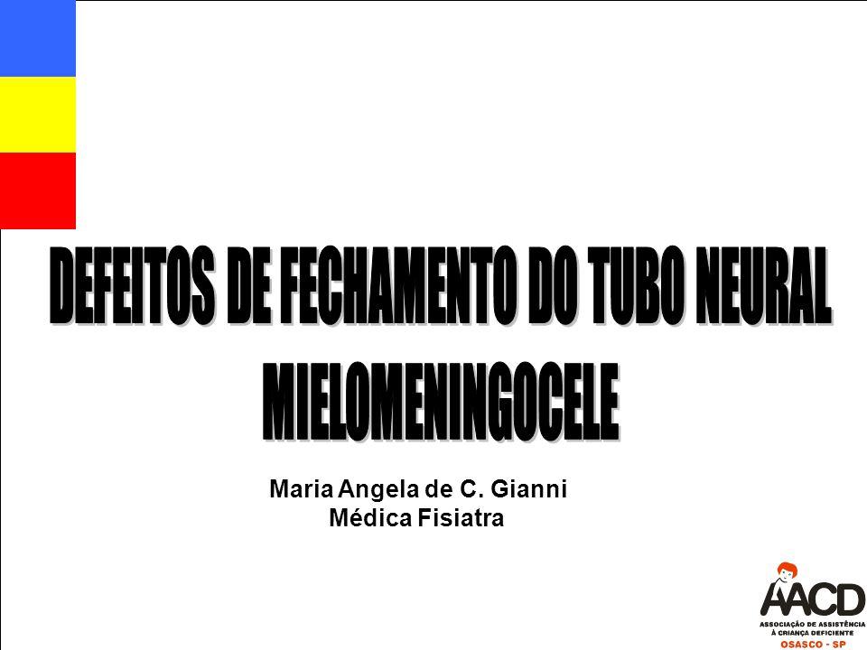 Maria Angela de C. Gianni Médica Fisiatra