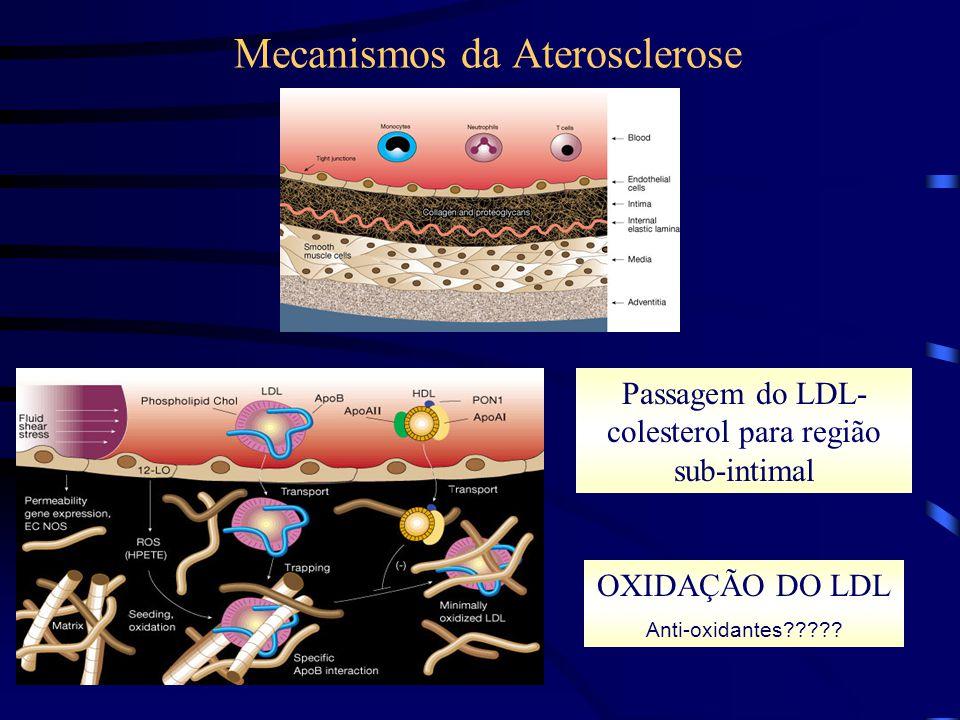 Mecanismos da Aterosclerose Passagem do LDL- colesterol para região sub-intimal OXIDAÇÃO DO LDL Anti-oxidantes?????