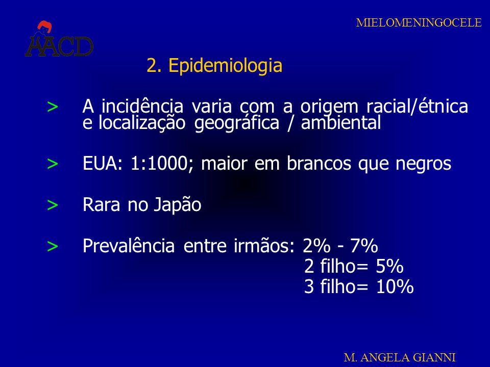 M. ANGELA GIANNI MIELOMENINGOCELE 2. Epidemiologia >A incidência varia com a origem racial/étnica e localização geográfica / ambiental >EUA: 1:1000; m