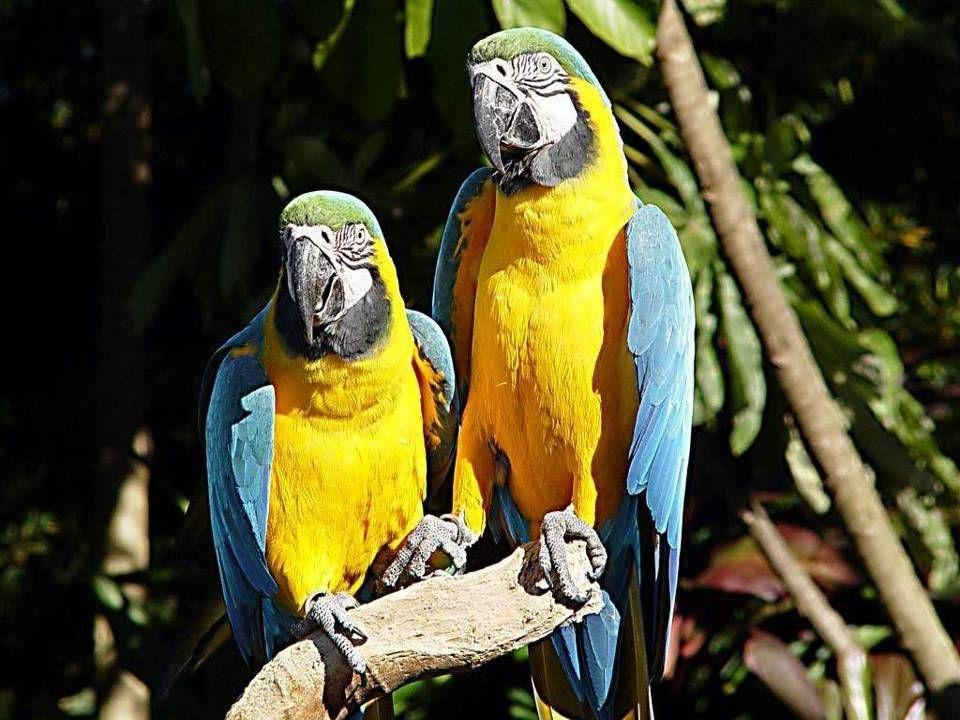 RIO DE JANEIRO RIO DE JANEIRO – ZATOKA GUANABARA