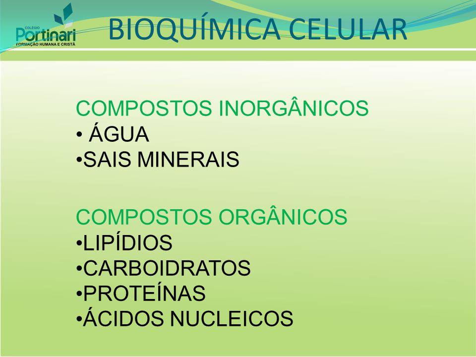 BIOQUÍMICA CELULAR COMPOSTOS INORGÂNICOS ÁGUA SAIS MINERAIS COMPOSTOS ORGÂNICOS LIPÍDIOS CARBOIDRATOS PROTEÍNAS ÁCIDOS NUCLEICOS