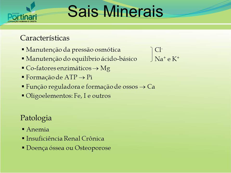 Características  Manutenção da pressão osmótica  Manutenção do equilíbrio ácido-básico  Co-fatores enzimáticos  Mg  Formação de ATP  Pi  Função