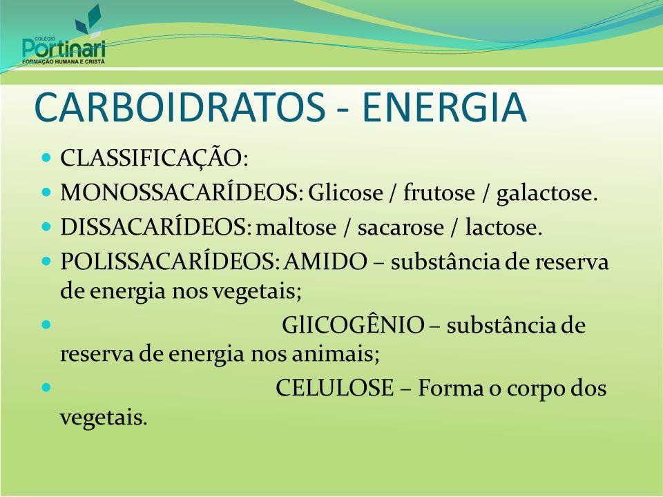 CARBOIDRATOS - ENERGIA CLASSIFICAÇÃO: MONOSSACARÍDEOS: Glicose / frutose / galactose. DISSACARÍDEOS: maltose / sacarose / lactose. POLISSACARÍDEOS: AM