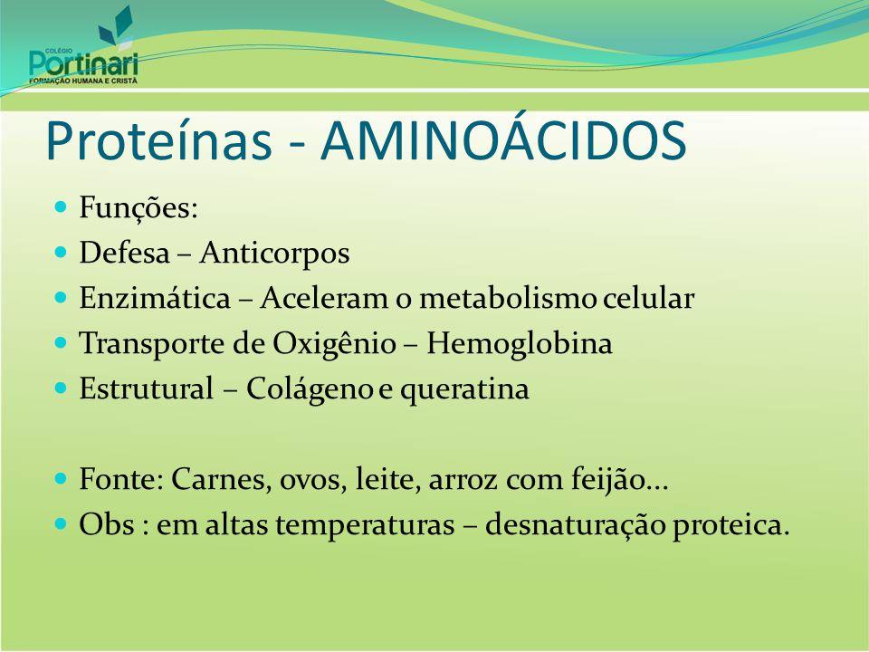 Proteínas - AMINOÁCIDOS Funções: Defesa – Anticorpos Enzimática – Aceleram o metabolismo celular Transporte de Oxigênio – Hemoglobina Estrutural – Col