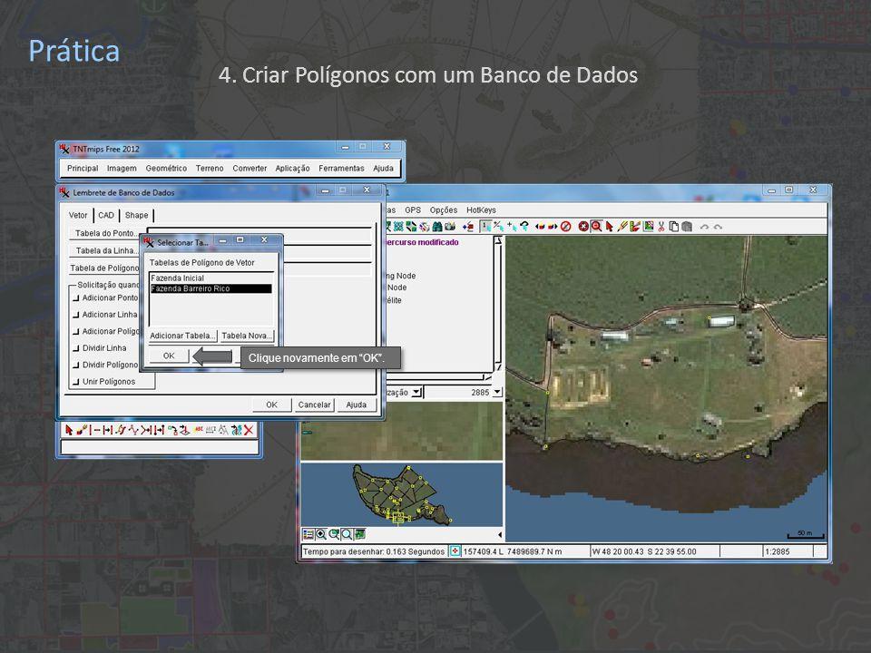 Prática Clique novamente em OK . 4. Criar Polígonos com um Banco de Dados