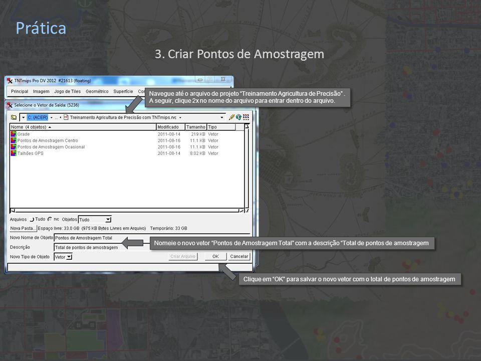 Prática Nomeie o novo vetor Pontos de Amostragem Total com a descrição Total de pontos de amostragem Clique em OK para salvar o novo vetor com o total de pontos de amostragem 3.