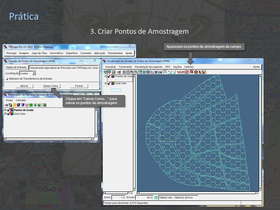 Prática Aparecem os pontos de amostragem de campo Clique em Salvar Como...