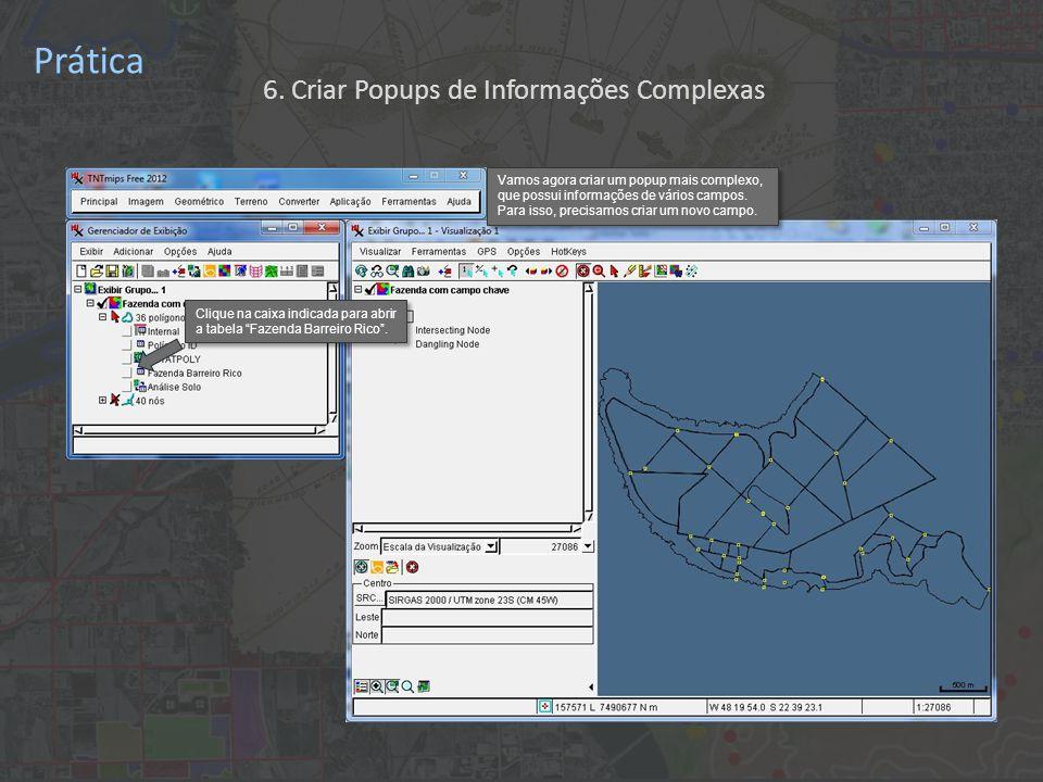 Prática Clique na caixa indicada para abrir a tabela Fazenda Barreiro Rico .