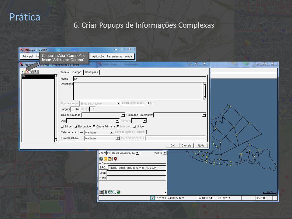 Prática Clique na Aba Campo no ícone Adicionar Campo . 6. Criar Popups de Informações Complexas