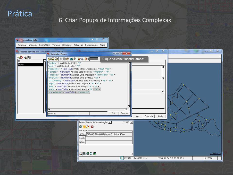 Prática Clique no ícone Inserir Campo . 6. Criar Popups de Informações Complexas