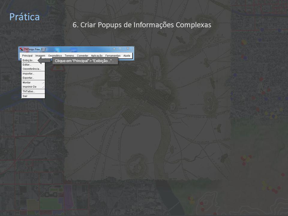 Prática 6. Criar Popups de Informações Complexas Clique em Principal > Exibição... .