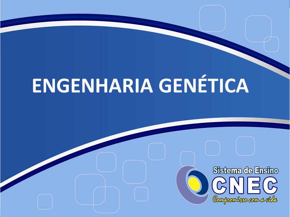 8. DNA Fingerprint