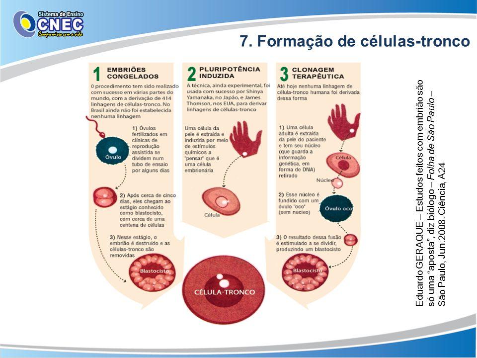 """7. Formação de células-tronco Eduardo GERAQUE – Estudos feitos com embrião são só uma """"aposta"""", diz biólogo – Folha de São Paulo – São Paulo, Jun.2008"""